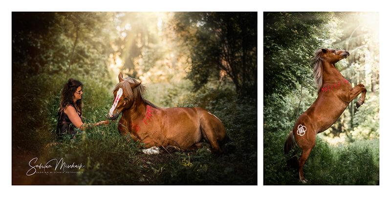 Equestrian photography photo album