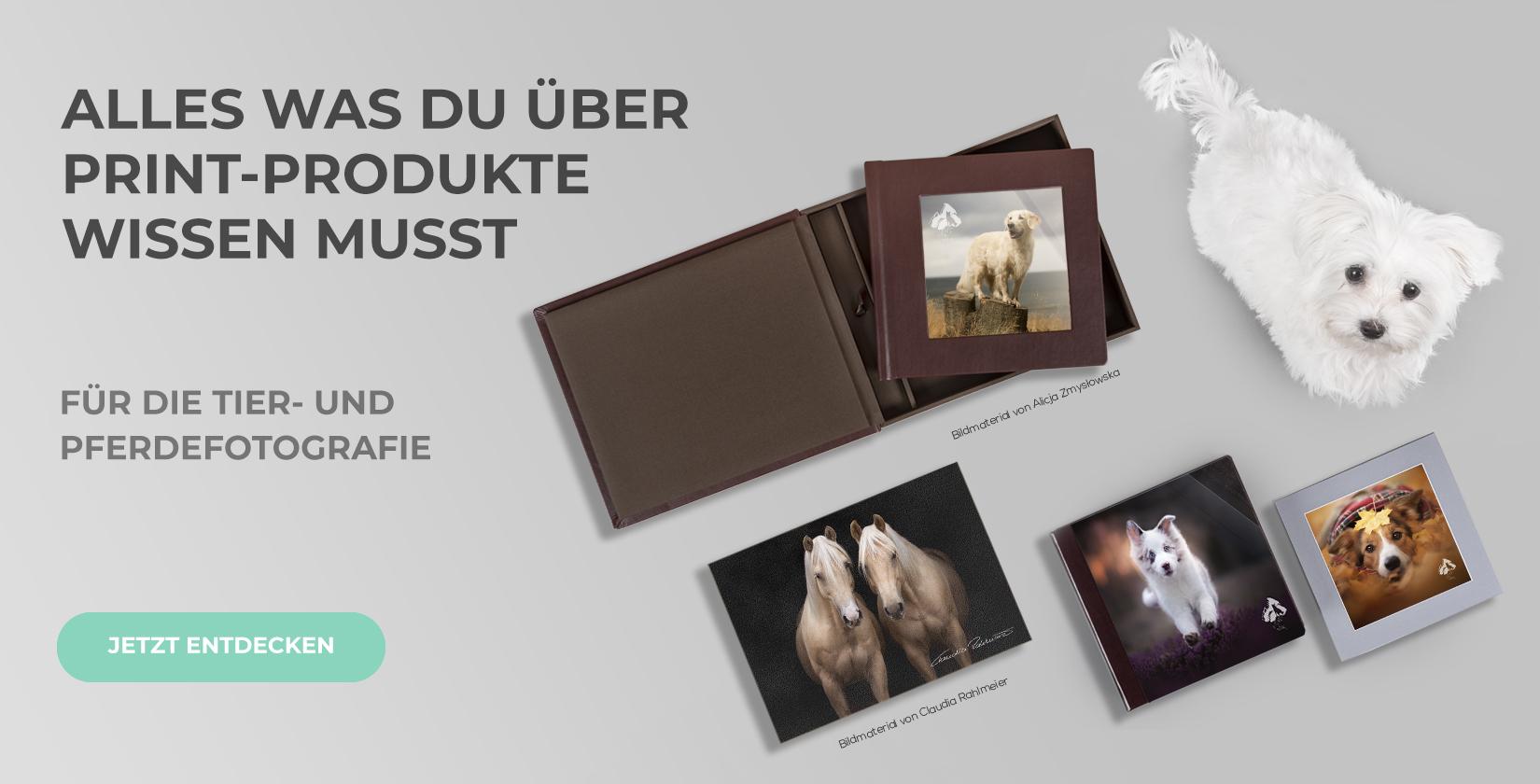 eBook und Musterprodukt-Angebot für Tierfotografen