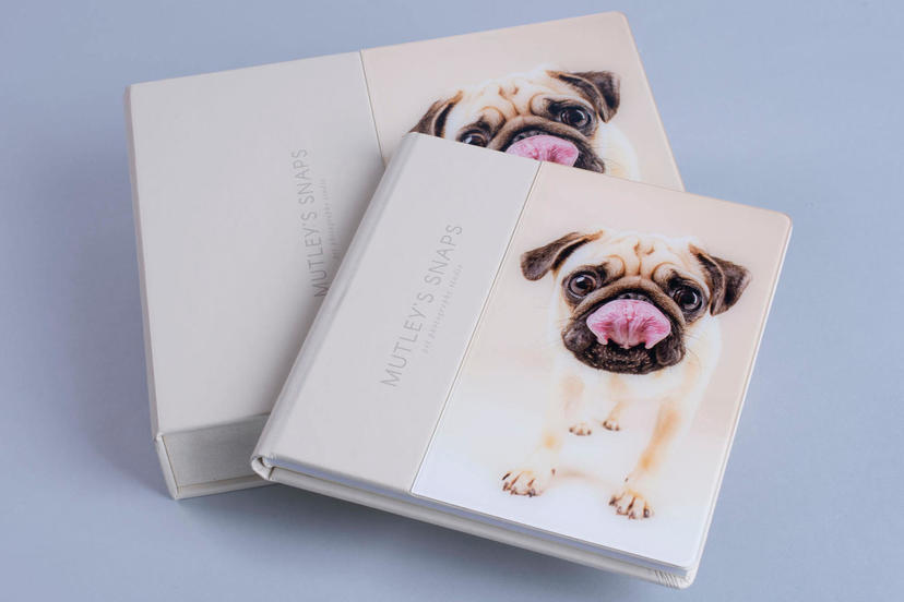 Acrylic Prestige full cover acrylic pattern professional photographer nphoto pet photographer photography products photo album box
