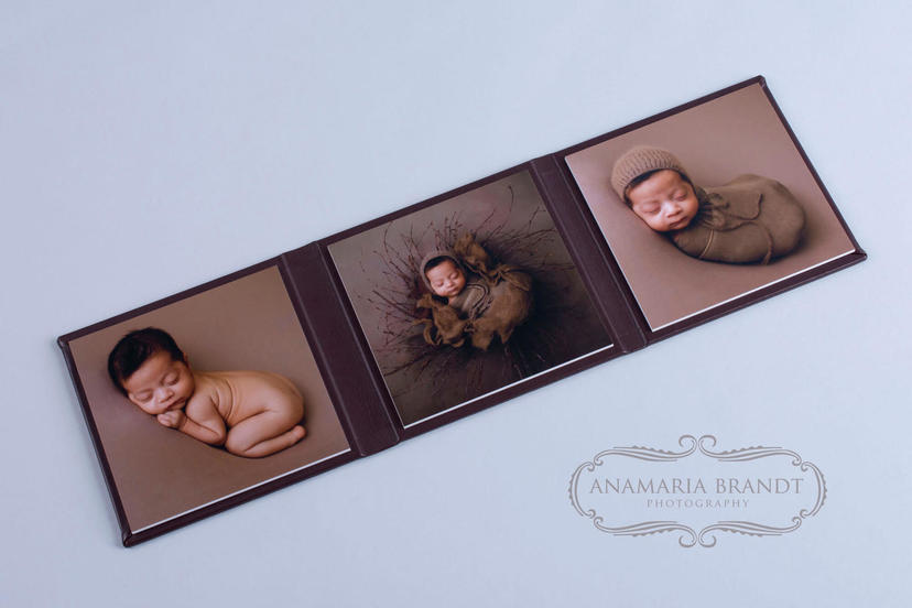 Triplex trifold 3 piece image product grandparent gifts photographer nphoto Ana Brandt newborn photography tri fold what products for newborn baby photography