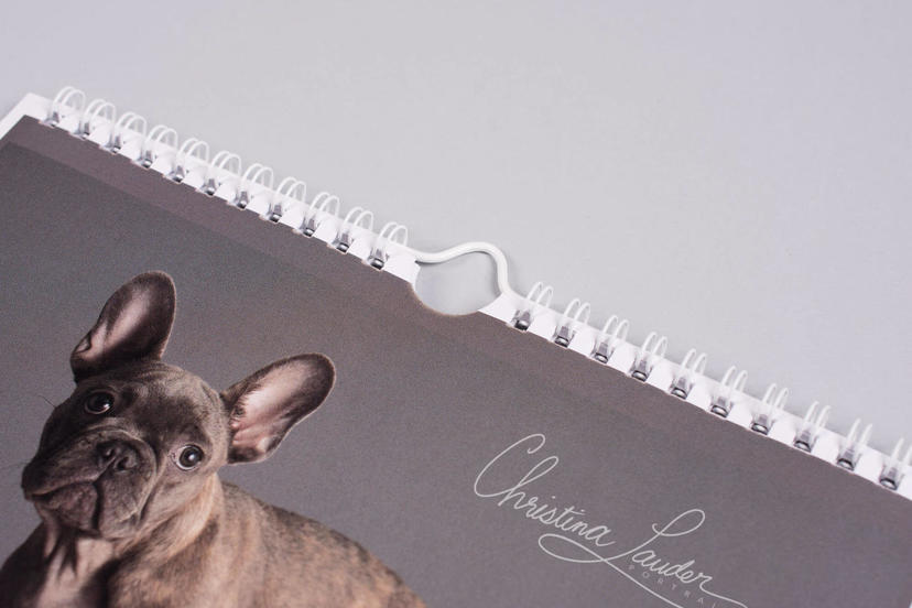Photo Calendar by nPhoto for professional pet photography