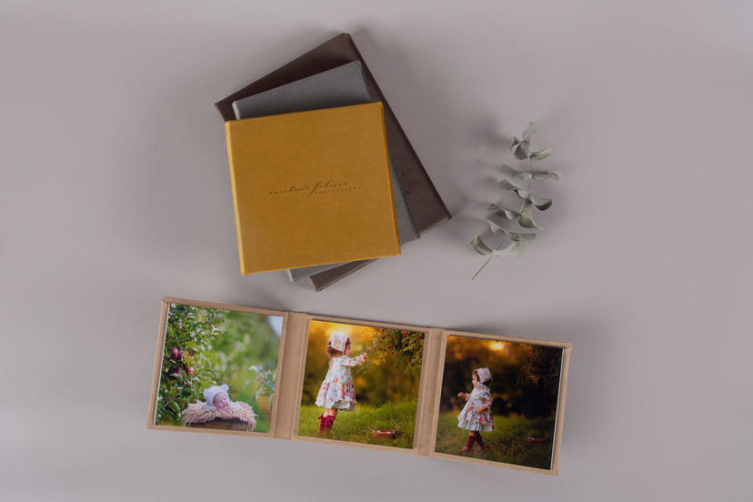 -fold nphoto upselling products for children and portrait photographers sand dune beige dijon yellow silver grey velvet